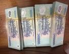Nữ cán bộ Ban Tuyên giáo tỉnh bị khai trừ Đảng vì đánh bạc
