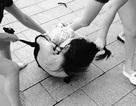 Khi đàn bà đánh ghen (1): Bi kịch xác định sai thủ phạm