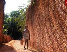 Người đàn ông tàn tật dành 3 năm một mình đào đường đi xuyên đồi