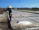 Nam Định: Diêm dân mặn muối, nhạt tiền