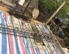 Điện giật chết một lao động thi công công trình sát đường dây 110KV