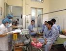 Hà Nam: Thêm nhiều người nhập viện điều trị sốt xuất huyết