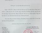 """Luật sư """"kêu cầu"""" quyền lợi cho dân, Bí thư tỉnh uỷ chuyển công văn đề nghị Uỷ ban tỉnh Lào Cai giải quyết"""