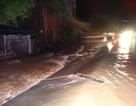 Tràn đê sông Bưởi, hàng trăm hộ dân phải sơ tán