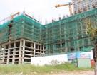 Vụ bị đình chỉ vẫn xây được đến... tầng 10: Công trình đã tạm ngừng thi công