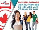 Du học Canada tỉnh Ontario - Cơ hội việc làm và định cư cùng Visa ưu tiên CES