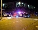 Mỹ: Hơn 100 người bị bắt vì đua ô tô trái phép