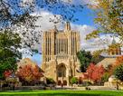 Tư vấn học bổng các trường phổ thông nội trú hàng đầu tại Mỹ