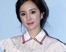 """Dương Mịch bị chỉ trích vì lạm dụng """"chỉnh sửa ảnh"""""""