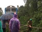 Đường sắt Bắc - Nam tê liệt vì bão số 12