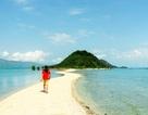 Những con đường giữa biển đẹp mê hồn ở Việt Nam