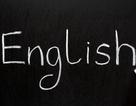 Trắc nghiệm: Bạn có viết đúng những từ hay bị sai chính tả trong tiếng Anh?