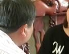 Trúng độc đắc Vietlott: Nỗi ám ảnh của anh thợ hàn ôm 71 tỷ đồng