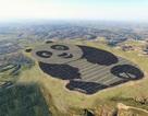 Trung Quốc xây dựng một trang trại điện mặt trời rộng 250 mẫu hình gấu trúc khổng lồ