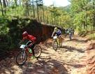Ngắm các vận động viên xe đạp vượt suối, băng rừng ở Đà Lạt