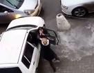 Bóng hồng đại chiến giành chỗ đậu xe