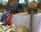 Tiêu hủy hơn 70 tấn hải sản tồn kho không đảm bảo an toàn thực phẩm