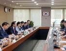 Nếu việc bỏ trốn giảm, Hàn Quốc sẽ nhận thêm nhiều lao động Việt Nam