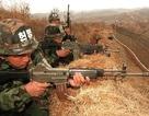 """Triều Tiên nói Hàn Quốc bắn 450 phát đạn vào """"đàn chim ở biên giới"""""""