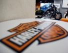 Harley-Davidson tham gia cuộc đua thâu tóm Ducati