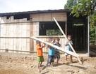 Quảng Ngãi: Trăn trở những phòng học lồ ô