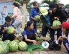 Quảng Ngãi: Sinh viên bán cả tấn dưa hấu giúp dân