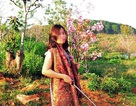 Phó Giám đốc Sở lên tiếng về vụ bẻ hoa ở Đà Lạt gây xôn xao cộng đồng mạng