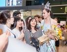 """Nữ hoàng Sắc đẹp Hoàng Thu Thảo bị """"bao vây"""" tại sân bay sau khi về nước"""