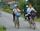 Cà Mau: Học sinh ven biển được nghỉ học ngày 2/11 tránh áp thấp nhiệt đới