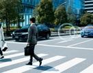 Honda City mới được trang bị hệ thống an toàn Honda Sensing