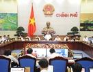 Chính phủ nhận lỗi về sai phạm trong bổ nhiệm cán bộ