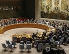 Bồ Đào Nha cắt quan hệ ngoại giao với Triều Tiên