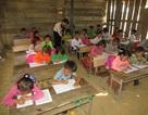 Phân bổ trên 600 tấn gạo cho học sinh vùng đặc biệt khó khăn
