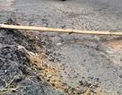Thanh Hóa: Đường mới đầu từ hơn 20 tỷ sửa chữa đã nhanh chóng xuống cấp