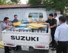 Bắt xe tải chở hơn 300 kg tôm chứa chất tạp chất