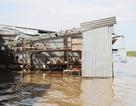 Sạt lở nghiêm trọng ở Cà Mau, 25 căn nhà bị ảnh hưởng