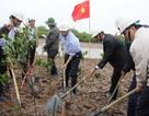 Bộ trưởng cùng người dân trồng cây ngập mặn ở Thái Bình