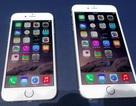 Ngược đời giá iPhone 6 Plus rẻ hơn cả iPhone 6 tại Việt Nam
