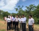 """WB và EVN phát động chiến dịch """"đo năng lượng mặt trời"""" ở Việt Nam"""