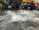 Mưa xối xả, nước cuồn cuộn từ xa lộ đến… đại lộ