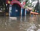Nghệ An: Nhiều trường cho học sinh nghỉ học vì mưa lớn