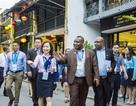 Không tổ chức tham quan bán đảo Sơn Trà trong tuần lễ APEC