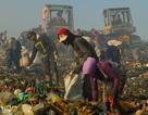 Tài sản của 4 người giàu nhất Indonesia bằng của 100 triệu người nghèo