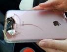Thoát chết may mắn trong vụ xả súng ở Las Vegas nhờ... iPhone đỡ đạn