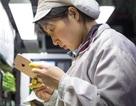 Foxconn xây nhà máy mới ở Trung Quốc chỉ để sản xuất cho Apple