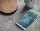 Phiên bản iPhone đặc biệt kỷ niệm 10 năm có giá hơn 1.000 USD?