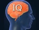 25 quốc gia có chỉ số IQ trung bình cao nhất thế giới