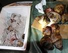 Phát hiện 19 đầu khỉ trong lô hàng trăm triệu đồng không rõ nguồn gốc
