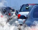 Chính phủ yêu cầu thanh tra về xăng dầu theo chuẩn Euro 4