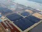 Vụ kiểm tra kho nhôm bí ẩn tại Vũng Tàu: Doanh nghiệp xin giảm bớt đoàn kiểm tra